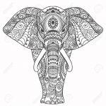 Elefante completo